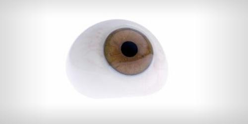 Vrste očnih proteza 5